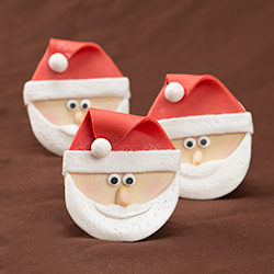ChristmasSanta0337_250