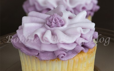 Fashion Inspired Ombre Buttercream Cupcake