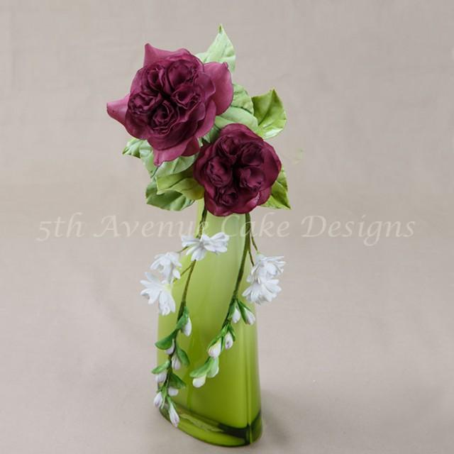 David Austin English sugar rose